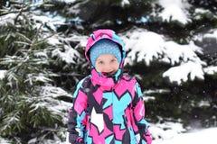 享用冬天和雪的一个小女孩 免版税库存照片