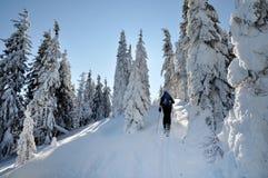 享用冬天第一雪的Backcountry滑雪者 免版税图库摄影
