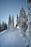 享用冬天第一雪的Backcountry滑雪者 免版税库存图片