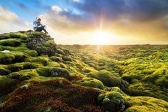 享用冰岛 免版税库存图片