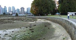 享用史丹利公园,温哥华,不列颠哥伦比亚省4K的人们 股票录像