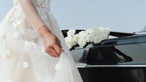 享用在婚纱的美丽的新娘在晴朗的公园 股票录像