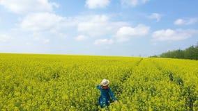 享用在开花的油菜籽领域的美女 股票视频