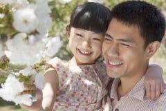 享用在树的微笑的父亲和女儿樱花在公园春天 免版税库存图片