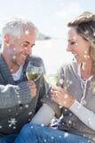 享用在野餐的夫妇的综合图象白葡萄酒在微笑对彼此的海滩 免版税图库摄影