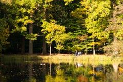 享用在长凳的人们太阳在池塘,秋天附近在荷兰 免版税库存照片