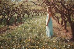 享用太阳的妇女在果树园 免版税图库摄影