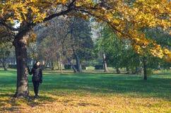 享用太阳的美丽的女孩在秋天森林下 免版税库存照片