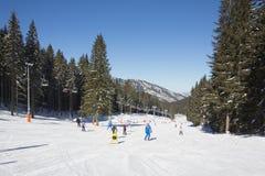 享用好雪的滑雪者和挡雪板 免版税图库摄影