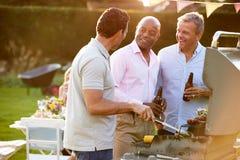 享用室外夏天烤肉的成熟男性朋友 免版税库存图片
