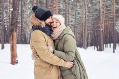享用富感情的夫妇一起花费时间在多雪的f 库存照片