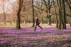 享用春天自然和番红花花的愉快的妇女 免版税库存照片