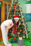 享用有圣诞树的兴奋的少妇礼物盒 免版税库存照片