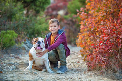 享用有他的最好的朋友红色和白色英国公牛狗的逗人喜爱的英俊的时髦的男孩五颜六色的秋天公园 Delightfull 免版税库存图片