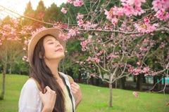 享用气味桃红色花的愉快的亚裔妇女 免版税库存照片