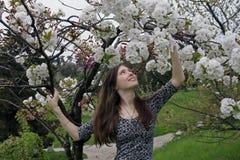 享用气味的美丽的愉快的少妇在一个开花的春天庭院里 免版税库存图片