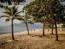 享用海滩的夫妇在南美 库存图片