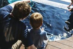 享用游泳池的家庭 库存图片
