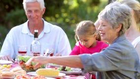 享用烤肉的多一代家庭在庭院里 股票录像