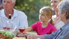 享用烤肉的多一代家庭在庭院里 股票视频