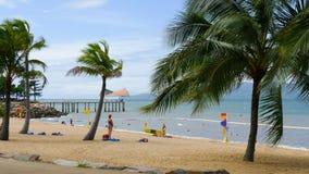享用热带海滩,汤斯维尔,澳大利亚的家庭 免版税库存照片