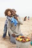 享用系列年轻人的烤肉海滩 库存照片