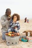 享用系列年轻人的烤肉海滩 库存图片