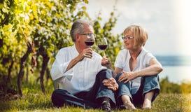 享用红葡萄酒的资深夫妇户外,妇女和人叮当响 库存图片