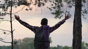 享用被启发的男性的背包徒步旅行者使从森林地小山的日落,自由惊奇 影视素材