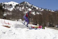享用雪的滑雪者 库存照片