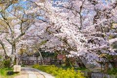 京都哲学家s结构 库存图片
