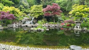 京都庭院在荷兰公园,伦敦的中心 免版税图库摄影