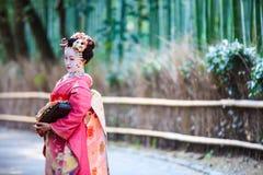 京都,日本竹森林 库存图片