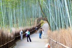 京都,日本竹森林 免版税库存图片