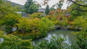 京都,日本, 2017年8月15日:日本庭院是其中一个日本文化最普遍和最时髦的区域  免版税库存照片