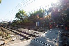 京都,日本- 2017年11月17日:在Ar的竹森林的铁路 图库摄影