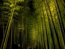 京都,日本- 2017年7月05日:未认出的在竹森林的人民美丽的景色Arashiyama的,京都,日本 免版税库存照片