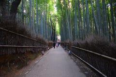 京都,日本- 2016年12月6日:Arashiyama ne竹森林  库存照片