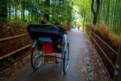 京都,日本- 2017年7月05日:在一辆红色人力车的未认出的人在美丽的竹森林的一条道路Arashiyama的 库存图片