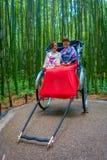 京都,日本- 2017年7月05日:在一辆红色人力车的未认出的人在美丽的竹森林的一条道路Arashiyama的 库存照片