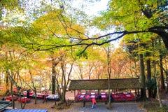 京都,日本- 2013年11月16日:极端爱国义者籍的,日本一个亭子 荆山 库存图片