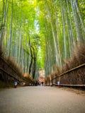 京都,日本- 2017年7月05日:走在道路的未认出的pwoman在美丽的竹森林在Arashiyama,京都 库存图片