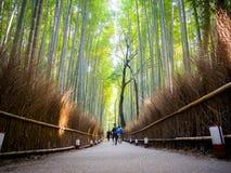 京都,日本- 2017年7月05日:走在道路的未认出的pwoman在美丽的竹森林在Arashiyama,京都 免版税库存图片