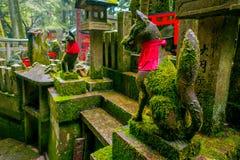 京都,日本- 2017年7月05日:Fox向雕象扔石头在Fushimi Inari寺庙Fushimi Inari Taisha寺庙在日本 库存图片