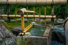 京都,日本- 2017年7月05日:Tenryu籍寺庙的华美的小池塘,在京都 图库摄影