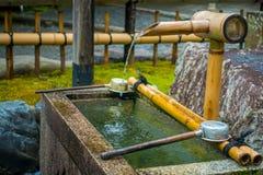 京都,日本- 2017年7月05日:Tenryu籍寺庙的华美的小池塘,在京都 库存照片