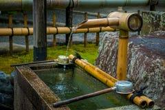 京都,日本- 2017年7月05日:Tenryu籍寺庙的华美的小池塘,在京都 免版税图库摄影