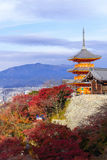 京都,日本- 2016年11月25日 - 美好的Momiji秋天c 库存照片