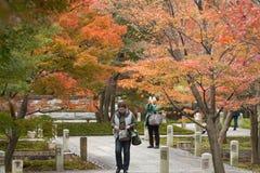 京都,日本- 11月25 :Chishaku在寺庙的游人在autu 免版税库存照片