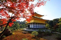 京都,日本Kinkaku籍寺庙在秋天 免版税库存照片